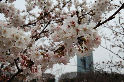 f:id:gzutetsu:20100328133138j:image