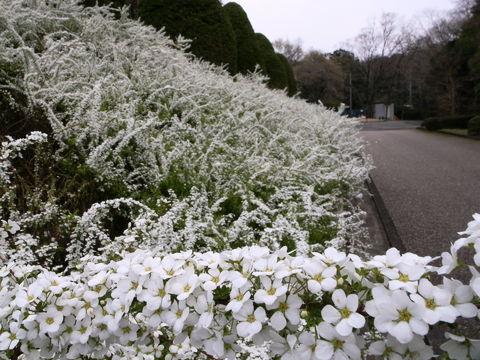 f:id:gzutetsu:20100328135215j:image