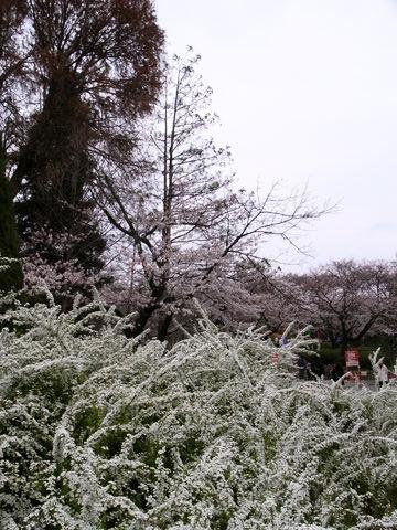 f:id:gzutetsu:20100328135259j:image