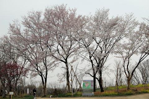 f:id:gzutetsu:20100328142902j:image