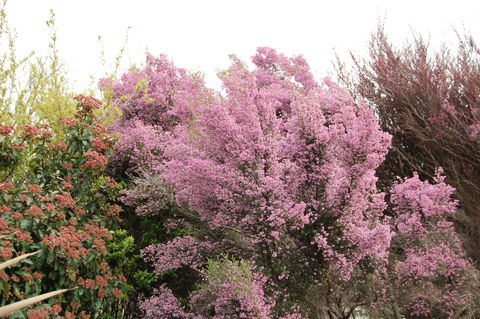 f:id:gzutetsu:20100328150346j:image