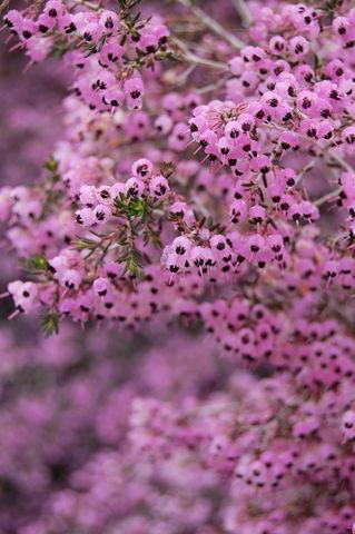 f:id:gzutetsu:20100328150732j:image