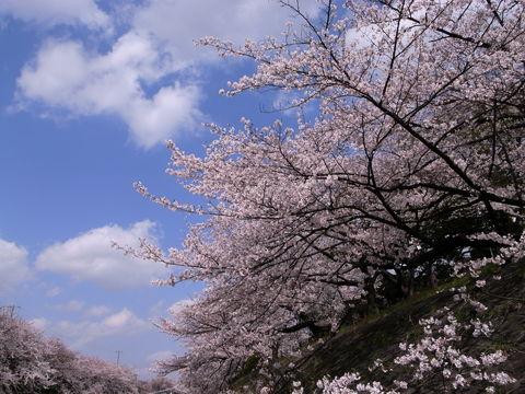 f:id:gzutetsu:20100403132700j:image