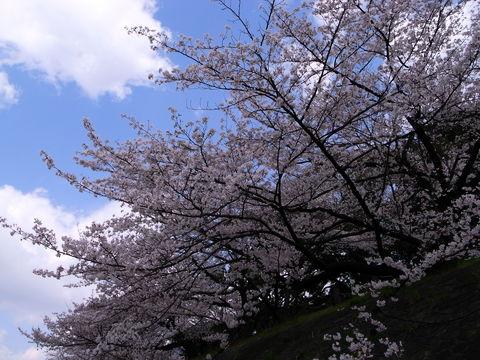 f:id:gzutetsu:20100403133141j:image