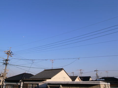 f:id:gzutetsu:20100425171735j:image
