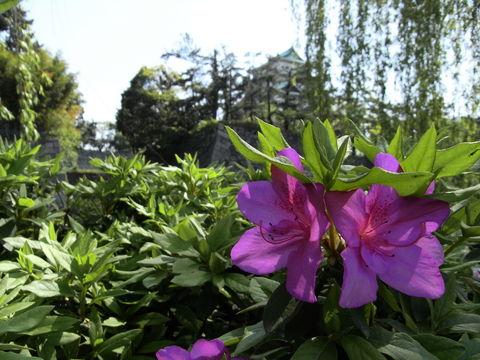 f:id:gzutetsu:20100429141337j:image