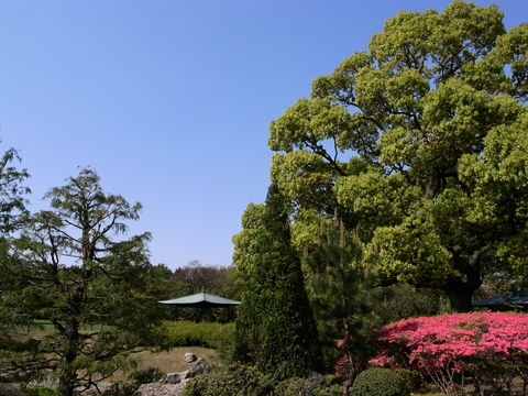f:id:gzutetsu:20100429145351j:image