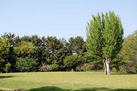f:id:gzutetsu:20100429151606j:image
