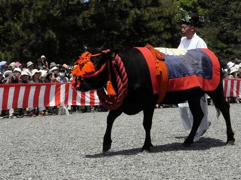 f:id:gzutetsu:20100515112020j:image