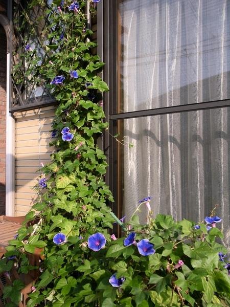 f:id:gzutetsu:20101005074146j:image