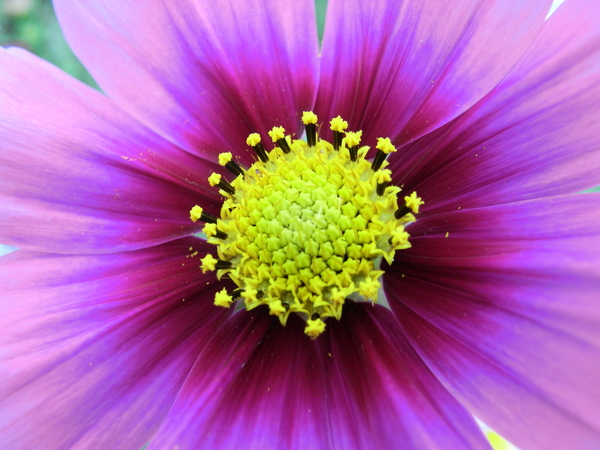f:id:gzutetsu:20101024133623j:image