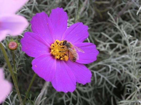 f:id:gzutetsu:20101024134901j:image