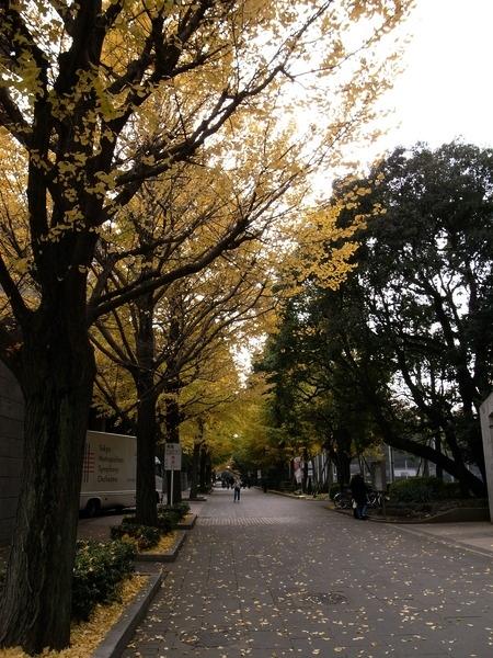 f:id:gzutetsu:20101125130334j:image