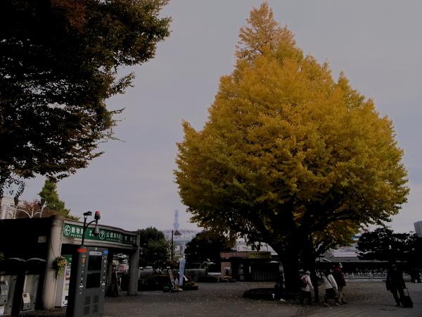 f:id:gzutetsu:20101125130445j:image