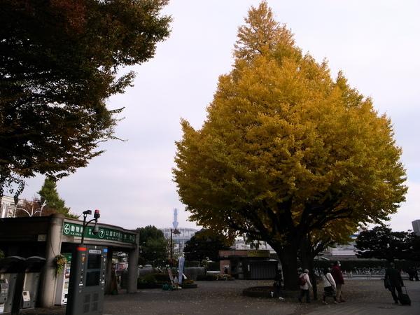 f:id:gzutetsu:20101125130458j:image