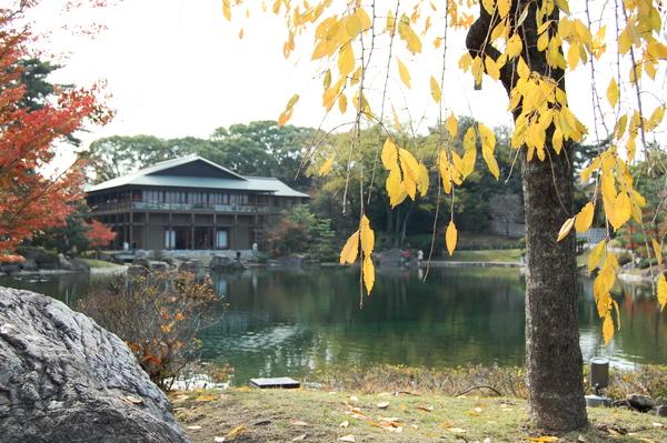 f:id:gzutetsu:20101128120301j:image