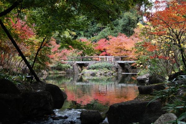 f:id:gzutetsu:20101128131014j:image