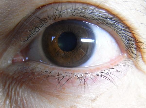 f:id:gzutetsu:20101231103749j:image