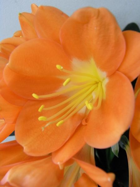 f:id:gzutetsu:20110406150336j:image