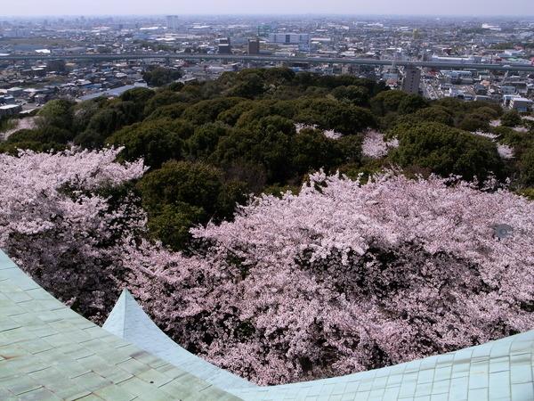 f:id:gzutetsu:20110410130051j:image