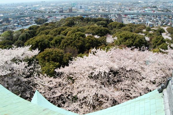 f:id:gzutetsu:20110410131923j:image