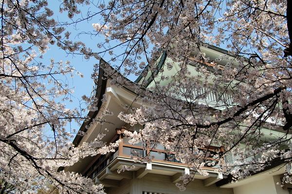 f:id:gzutetsu:20110410134839j:image