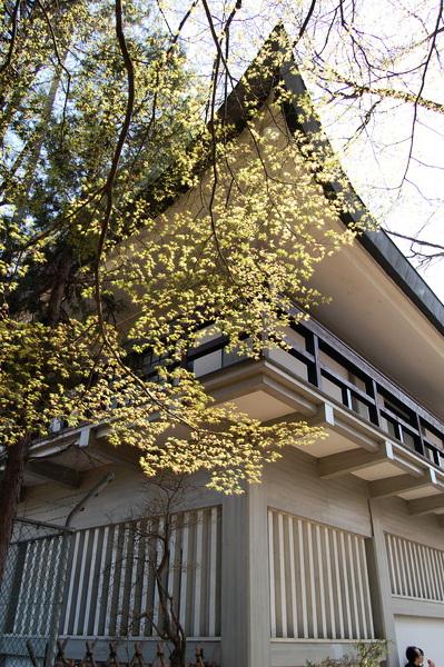 f:id:gzutetsu:20110410135348j:image