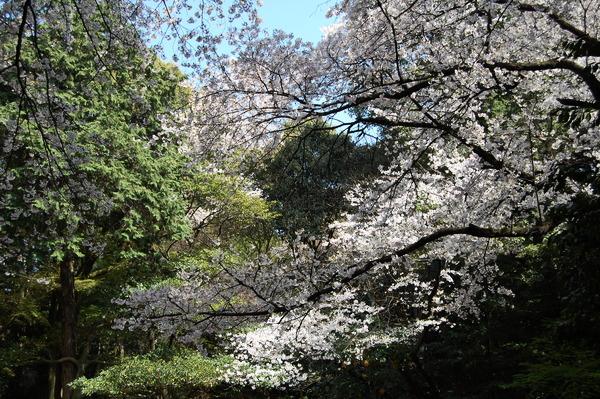 f:id:gzutetsu:20110410142426j:image