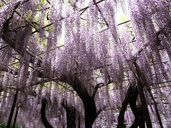 f:id:gzutetsu:20110502125137j:image