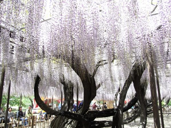 f:id:gzutetsu:20110502130329j:image