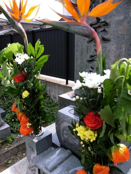 f:id:gzutetsu:20110807153454j:image