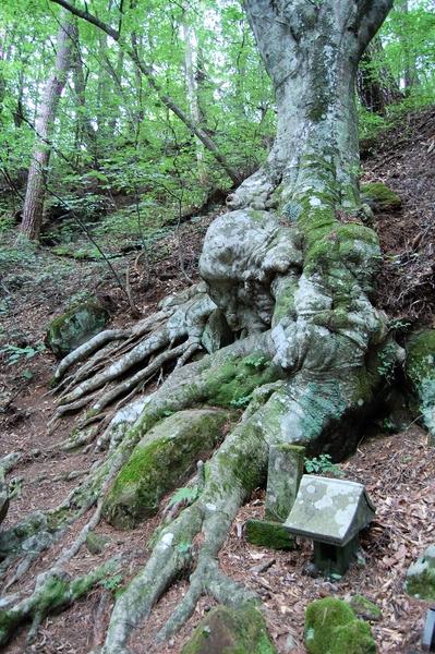 f:id:gzutetsu:20110811113250j:image