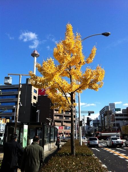 f:id:gzutetsu:20111209115340j:image