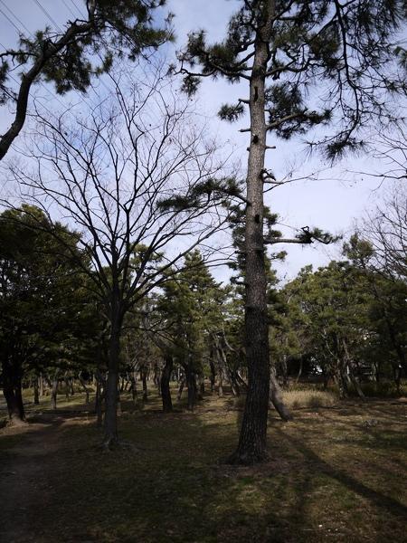 f:id:gzutetsu:20120310153436j:image