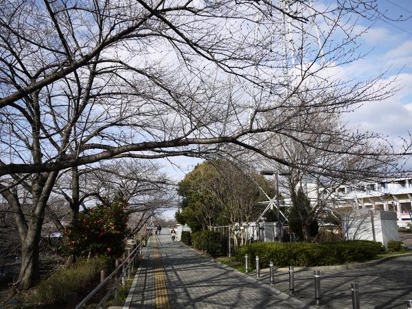f:id:gzutetsu:20120310155336j:image