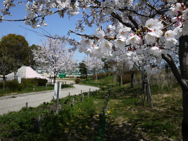 f:id:gzutetsu:20120408113226j:image