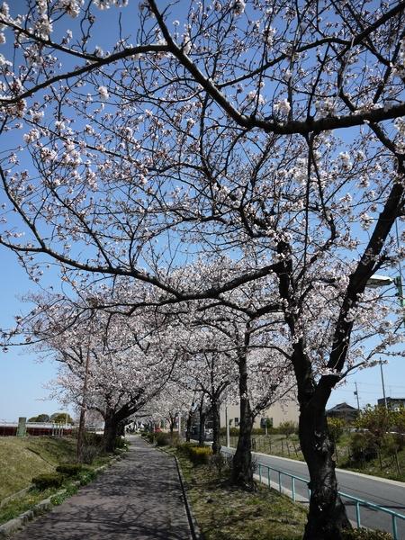 f:id:gzutetsu:20120408115731j:image