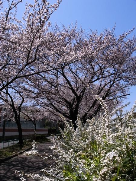 f:id:gzutetsu:20120408115901j:image