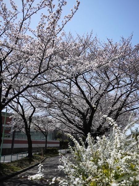 f:id:gzutetsu:20120408120045j:image