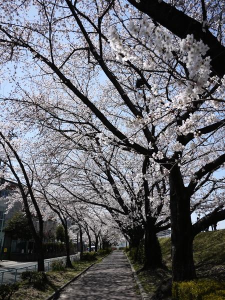 f:id:gzutetsu:20120408120219j:image