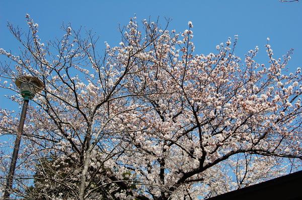f:id:gzutetsu:20120408120225j:image