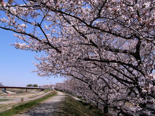 f:id:gzutetsu:20120408120717j:image