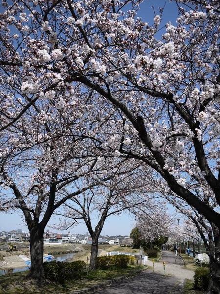 f:id:gzutetsu:20120408122524j:image