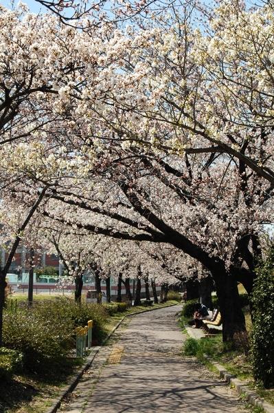 f:id:gzutetsu:20120408123346j:image