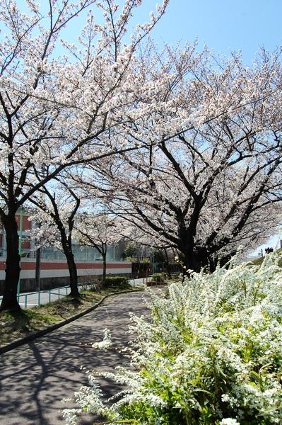f:id:gzutetsu:20120408123933j:image