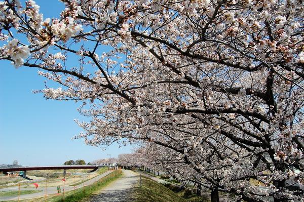 f:id:gzutetsu:20120408124929j:image