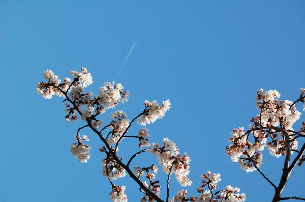 f:id:gzutetsu:20120408124954j:image