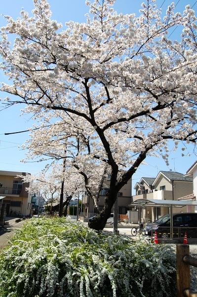 f:id:gzutetsu:20120408132419j:image