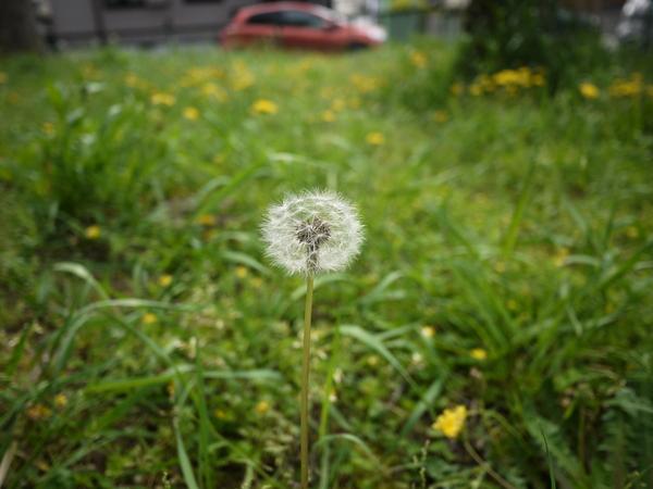 f:id:gzutetsu:20120429144216j:image