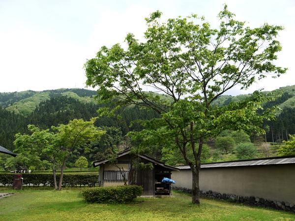 f:id:gzutetsu:20120506134744j:image